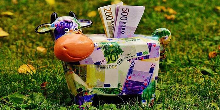 Free currency бізнес купуватиме валюту без підтверджувальних документів